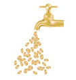 gold tap with money vector image