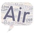 Not Air Mattress Air Mattress Bed text background vector image vector image