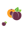 Plum Abstract fruit on white background vector image vector image