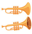 set of trumpet on white background vector image vector image