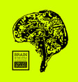 the brain is in the form of a topographic map or vector image vector image