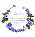 the wreath of scilla flowers spring flowers vector image
