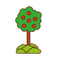 tree with fruit natural forest environment concept vector image