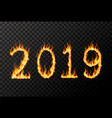 2019 number made from bright fire flames on vector image