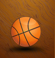 basketball on the court icon vector image