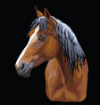colorful horse portrait-10 vector image