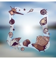 Frame of seashells vector image vector image