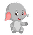 funny baby elephant cartoon vector image
