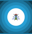 isolated buzz flat icon fly element can be vector image vector image