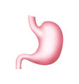 stomach icon gastric human health vector image