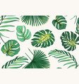 exotic tropical fern greenery botanical seamless vector image