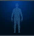 human body made points and lines polygonal low vector image