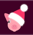 pig piglet head in the new years hat face nice vector image vector image