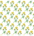 Watercolor elecampane herb seamless pattern vector image