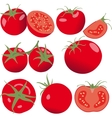 Tomato Set tomatoes and slice Isolated vector image