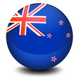 A soccer ball with the flag of New Zealand vector image
