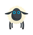 black sheep icon flat style vector image vector image