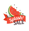 color summer sale banner with watermelon vector image vector image