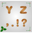 Gingerbread letters y z vector image vector image