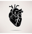Icon Body heart icon On the white background vector image vector image