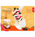 instant oatmeal with raspberry and blackberry vector image vector image