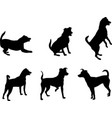 mini pinscher dog silhouettes set - artwork vector image vector image