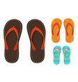 set of colorful flip flops vector image
