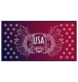 Abstract background USA patriotic design vector image