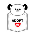 adopt me dog in pocket holding paws red heart vector image
