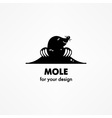 Cute cartoon mole vector image vector image