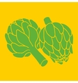 doodle of artichoke organic vegan vector image vector image
