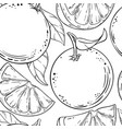 orange fruit pattern on white background vector image vector image
