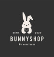rabbit bunny shop store hipster vintage logo icon vector image vector image