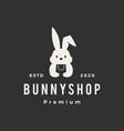 rabbit bunny shop store hipster vintage logo icon vector image