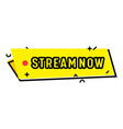 stream now isolated banner for live streaming vector image vector image