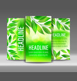 flyer set of green leaves backgrounds vector image