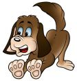 brown dog vector image