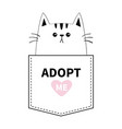 cat sitting in pocket adopt me pink heart vector image vector image