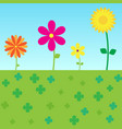 colorful flowers floral blooming on grass vector image