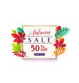 fashionable autumn sale vector image vector image