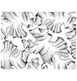 hand drawn of laver seaweed on white background vector image vector image