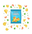 realistic detailed 3d chips advertisement bag vector image vector image