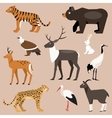 Set of animal Far East vector image vector image