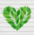 heart from green leaves vector image