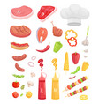 bbq set meat for barbecue and spice icon vector image