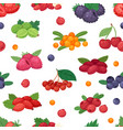 berry berrying mix of strawberry blueberry vector image vector image