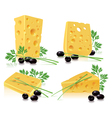 Cheese olives onion parsley vector image vector image
