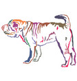 Colorful decorative standing portrait of shar pei vector image