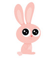 cute bunny on white background vector image vector image