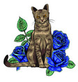 hand drawn ink doodle cat and flowers on white vector image vector image